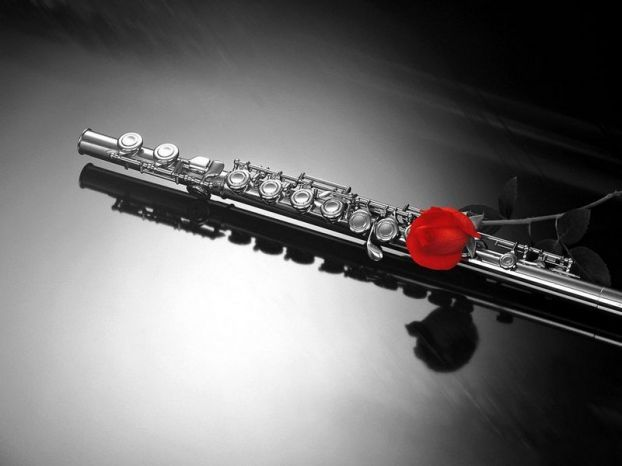 Instrument and rose