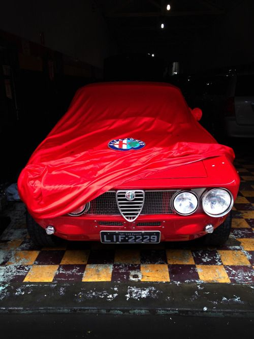 Alfa Romeo 105/115 Series Coupé
