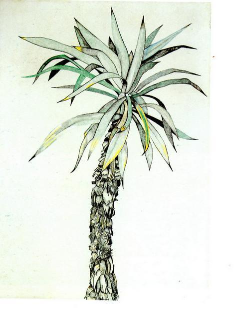 freud-  Palm Tree, Lucian Freud