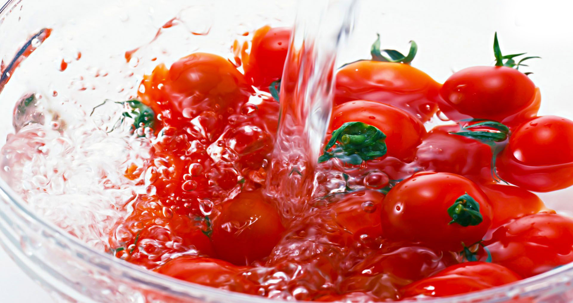tomatos in a water bowl