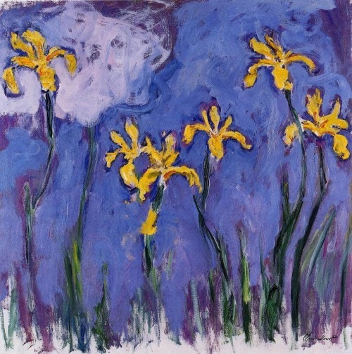 Claude Monet Yellow Irises with Pink Cloud